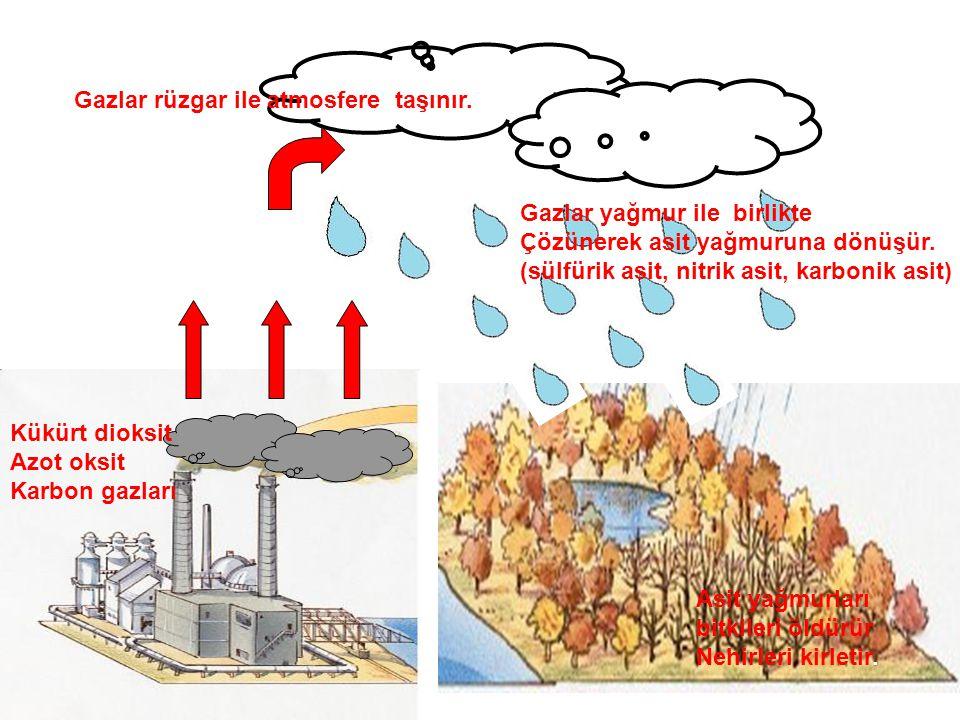 Gazlar rüzgar ile atmosfere taşınır.