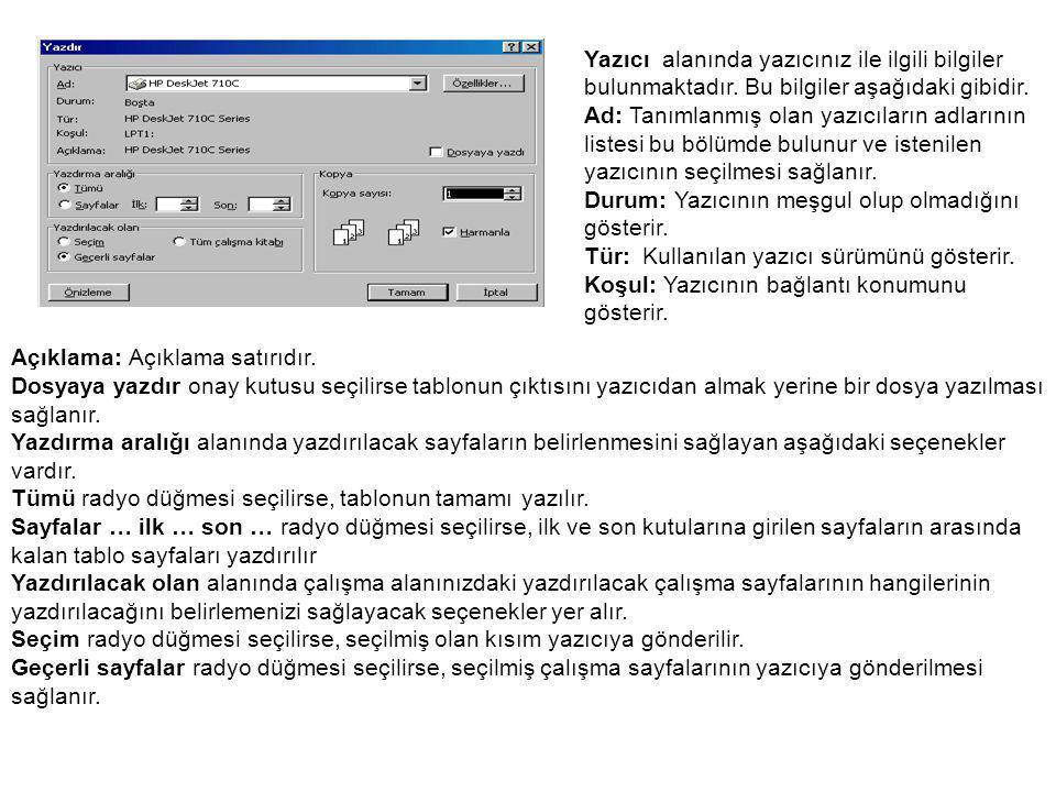 Yazıcı alanında yazıcınız ile ilgili bilgiler bulunmaktadır