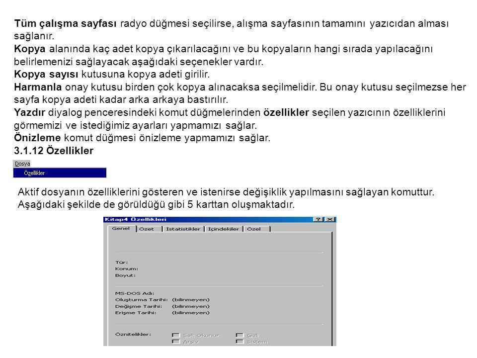 Tüm çalışma sayfası radyo düğmesi seçilirse, alışma sayfasının tamamını yazıcıdan alması sağlanır.