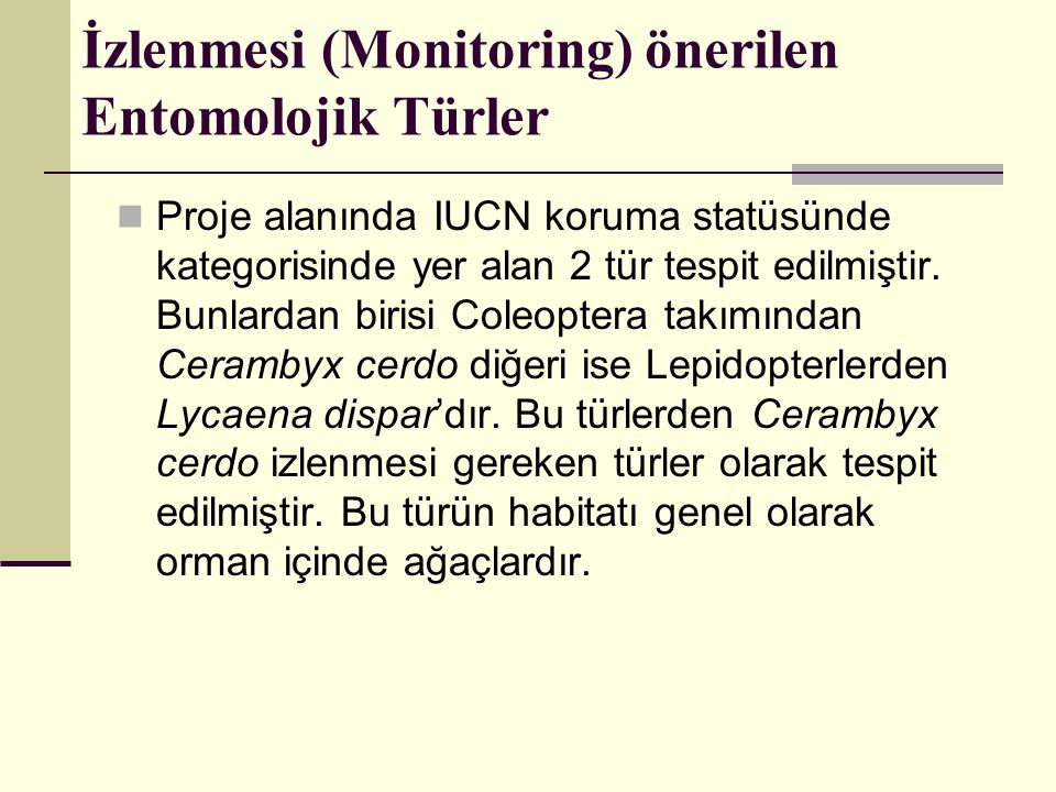 İzlenmesi (Monitoring) önerilen Entomolojik Türler