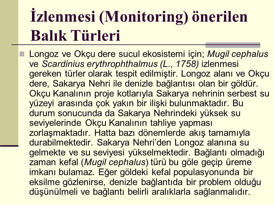 İzlenmesi (Monitoring) önerilen Balık Türleri