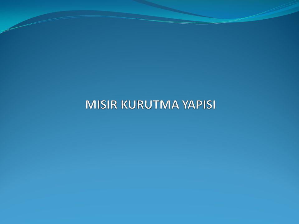 MISIR KURUTMA YAPISI