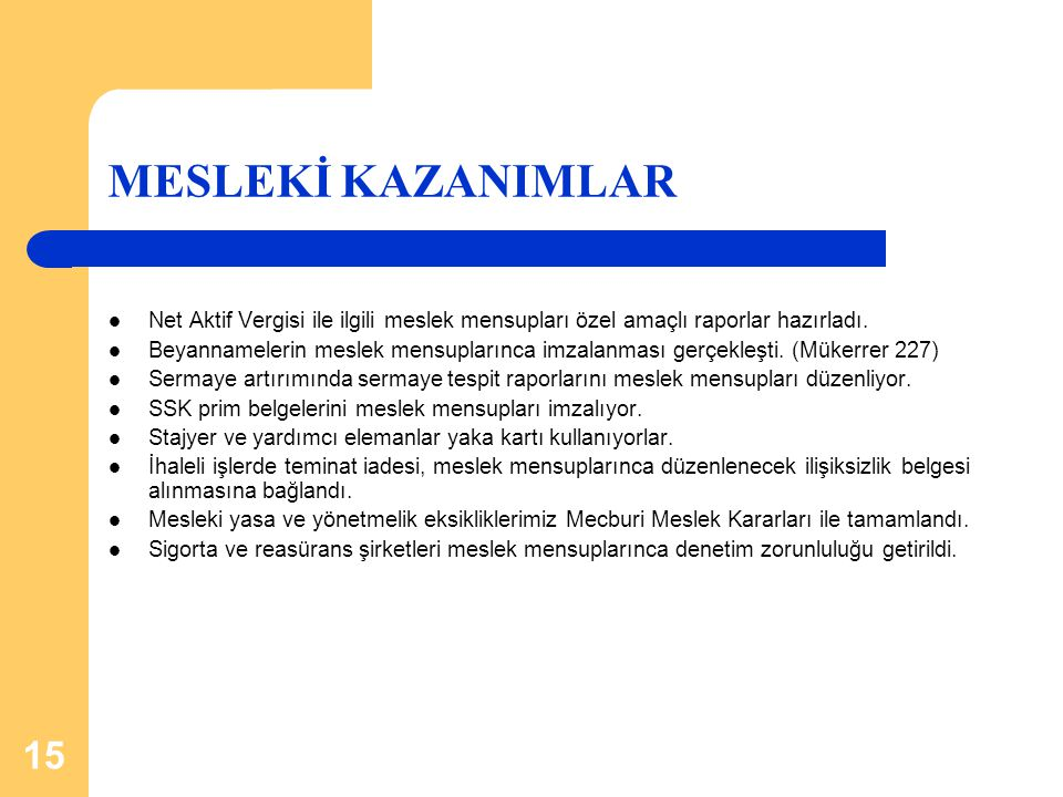 MESLEKİ KAZANIMLAR Net Aktif Vergisi ile ilgili meslek mensupları özel amaçlı raporlar hazırladı.