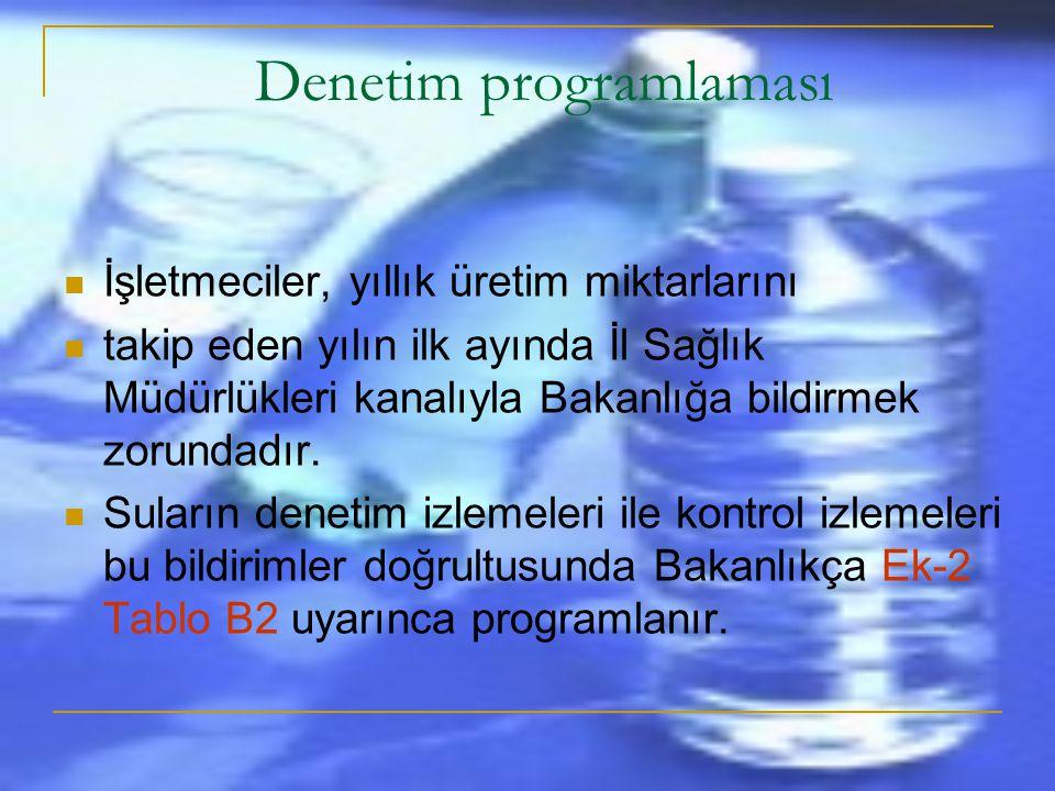 Denetim programlaması