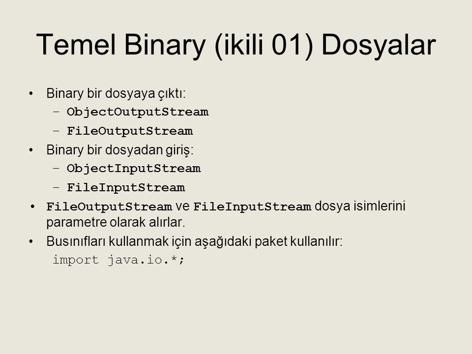 Temel Binary (ikili 01) Dosyalar