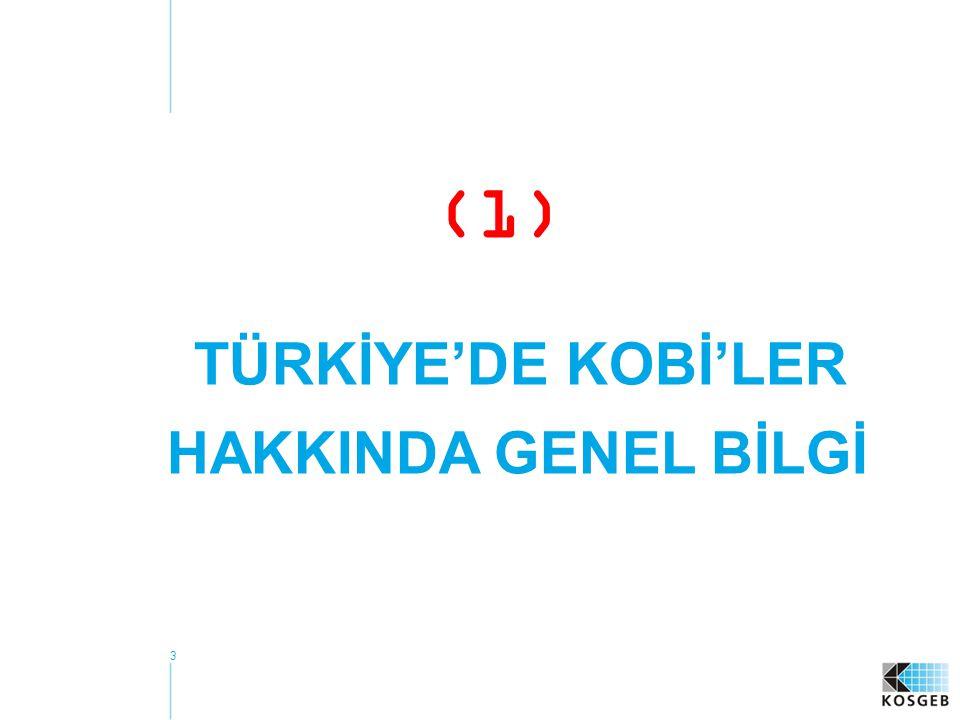 TÜRKİYE'DE KOBİ'LER HAKKINDA GENEL BİLGİ