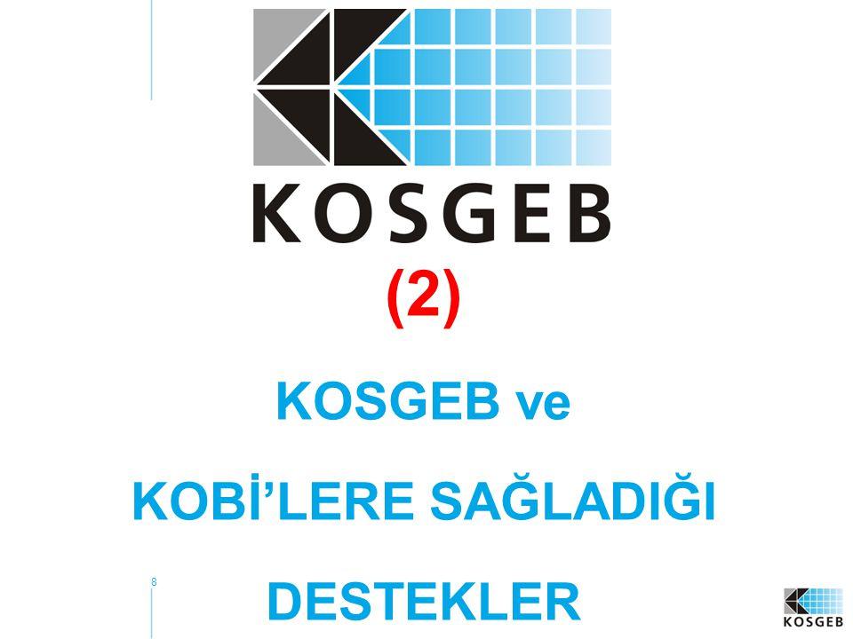 (2) KOSGEB ve KOBİ'LERE SAĞLADIĞI DESTEKLER