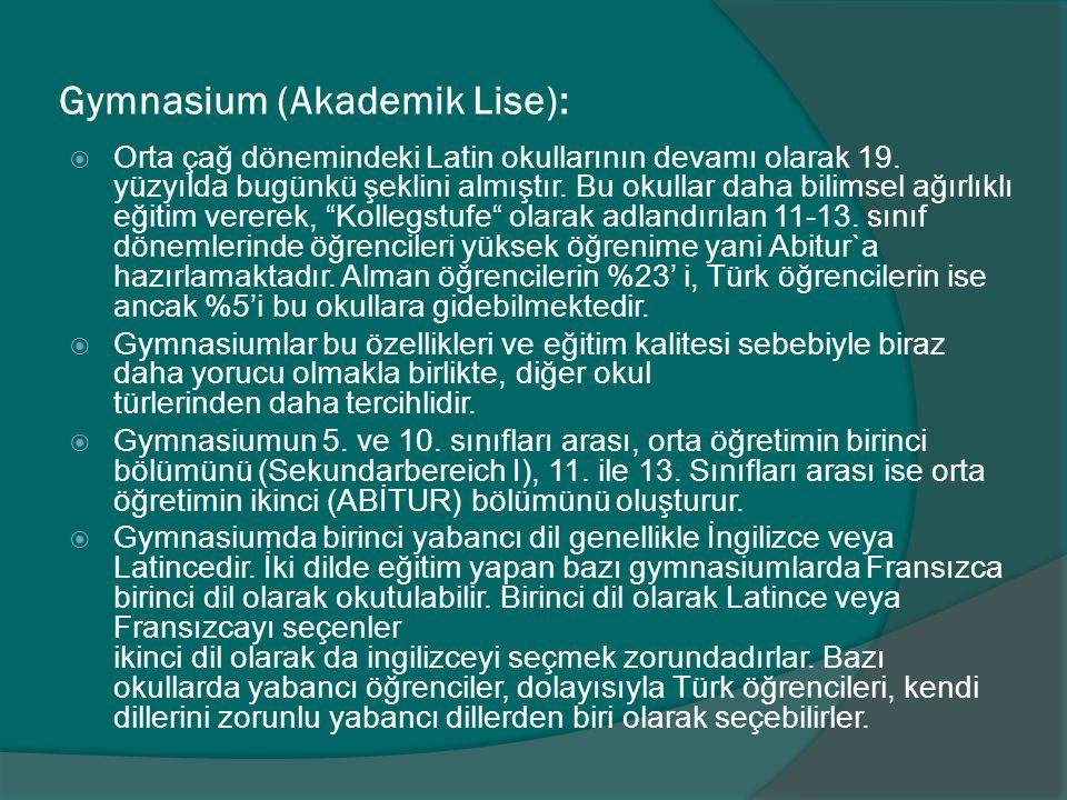 Gymnasium (Akademik Lise):