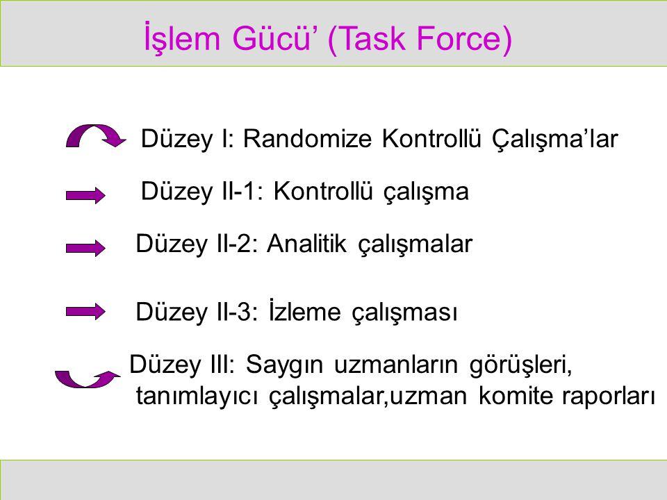 İşlem Gücü' (Task Force)