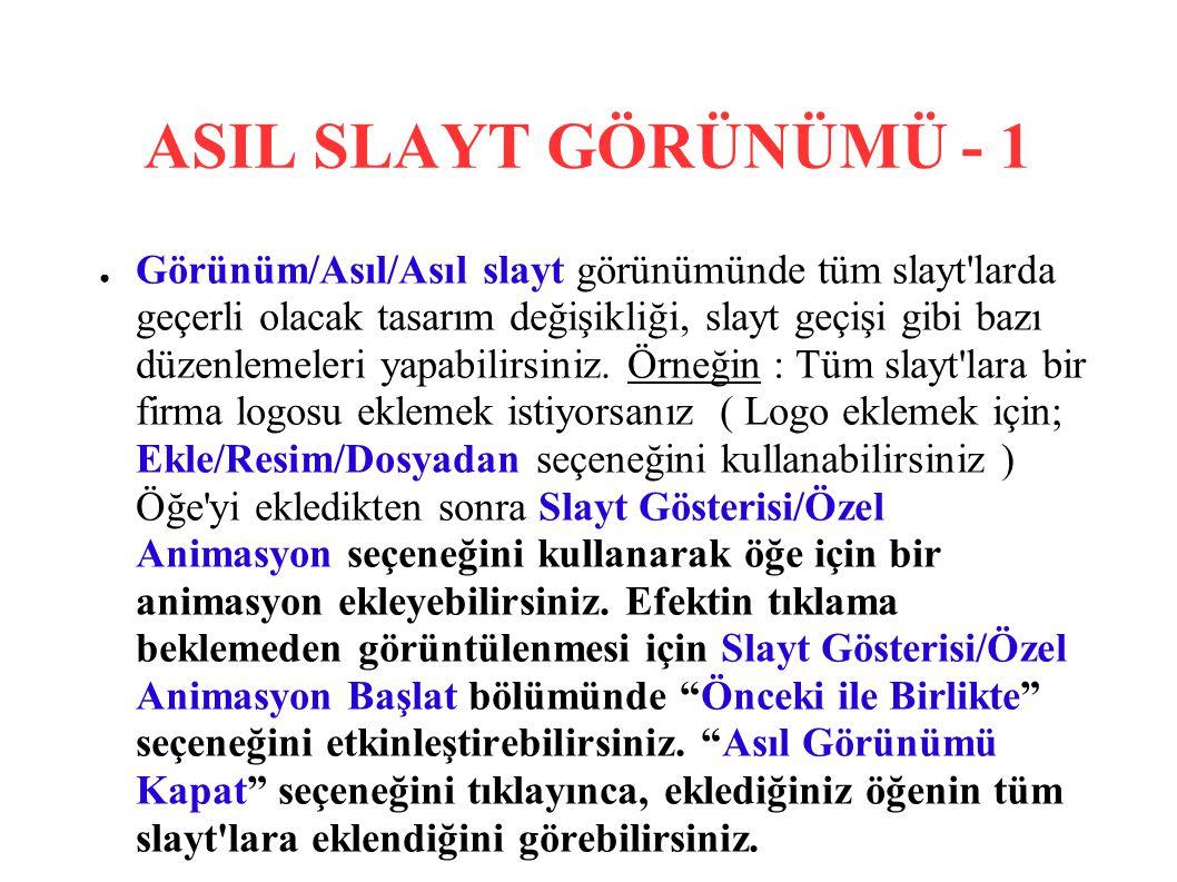 ASIL SLAYT GÖRÜNÜMÜ - 1