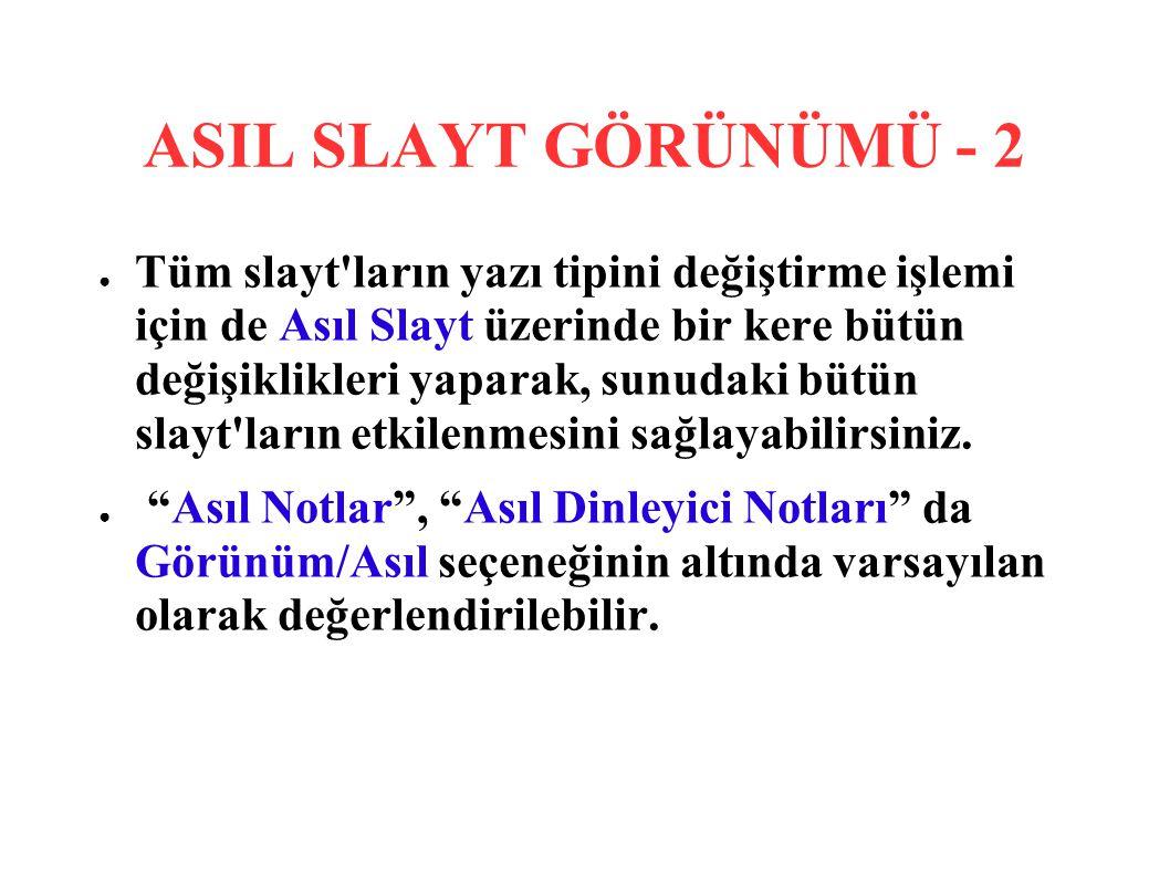 ASIL SLAYT GÖRÜNÜMÜ - 2