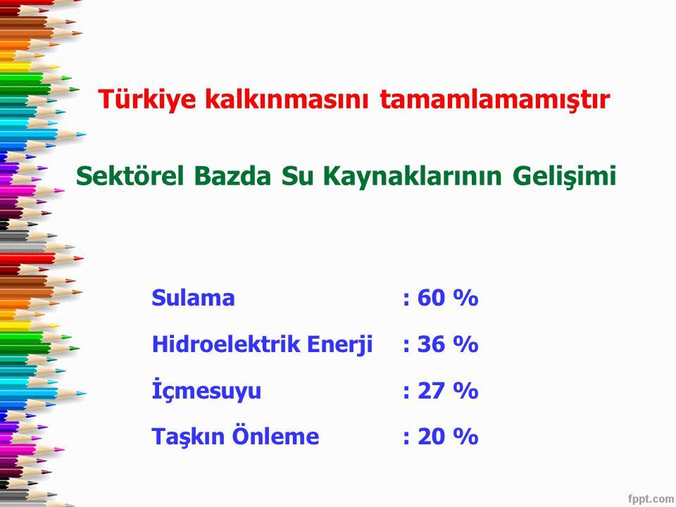 Türkiye kalkınmasını tamamlamamıştır