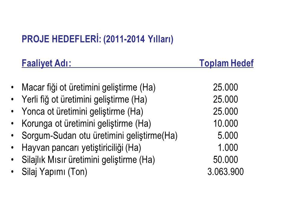 PROJE HEDEFLERİ: (2011-2014 Yılları)