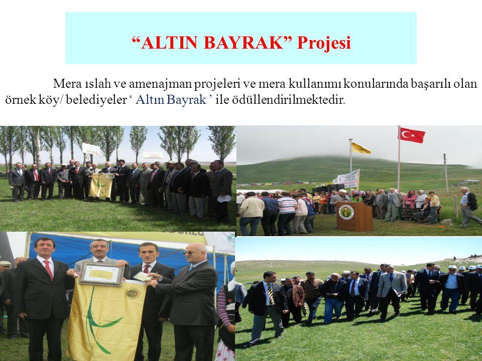 ALTIN BAYRAK Projesi