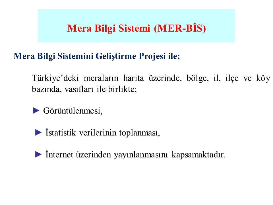Mera Bilgi Sistemi (MER-BİS)
