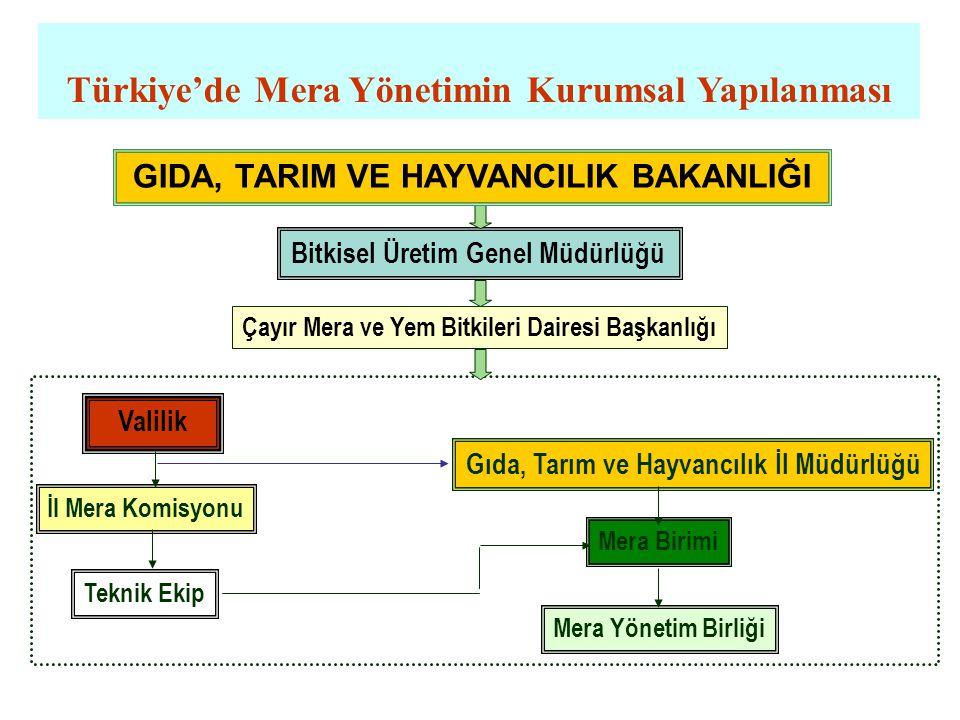 Türkiye'de Mera Yönetimin Kurumsal Yapılanması