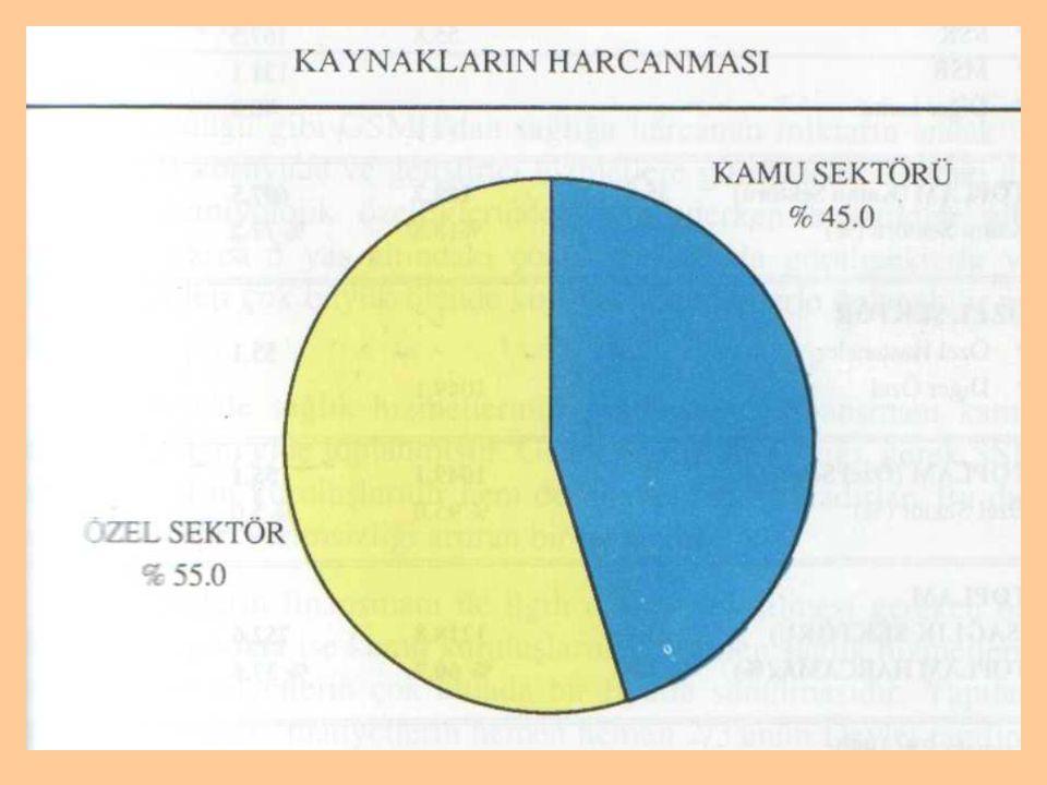 Şekil 6. Türkiye'de sağlığa ayrılan kaynakların harcanması ( 7 )