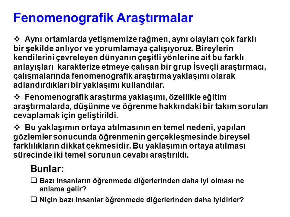 Fenomenografik Araştırmalar