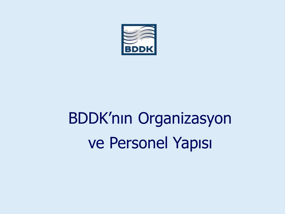 BDDK'nın Organizasyon