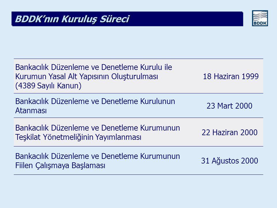BDDK'nın Kuruluş Süreci
