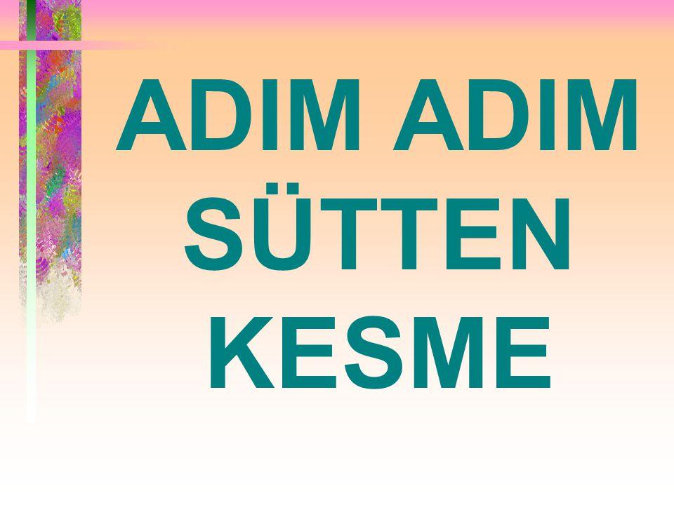 ADIM ADIM SÜTTEN KESME