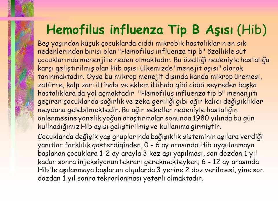 Hemofilus influenza Tip B Aşısı (Hib)