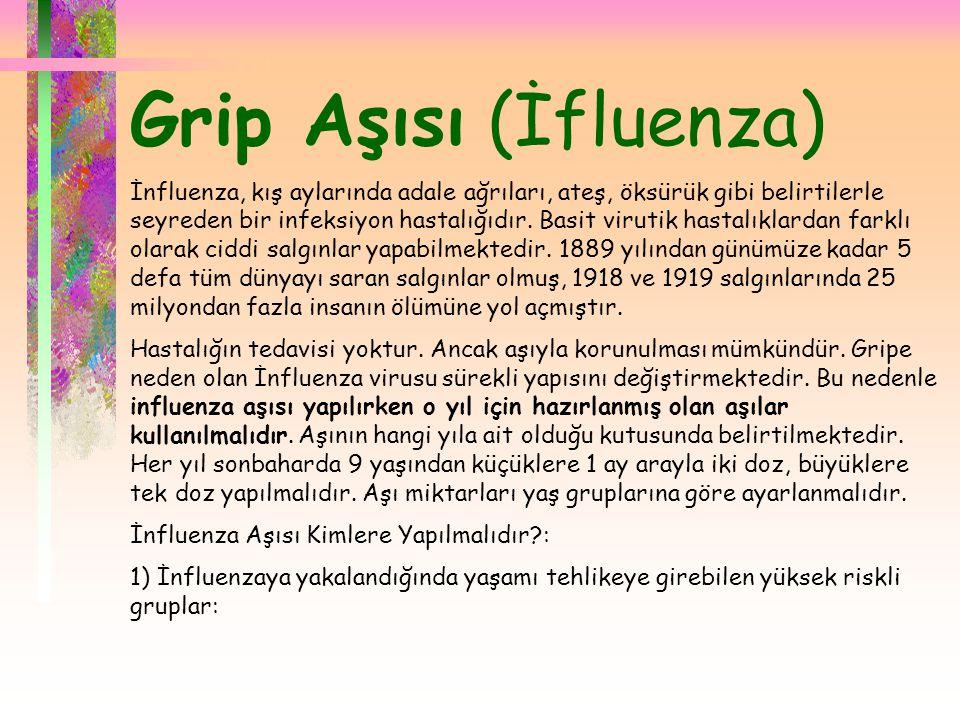 Grip Aşısı (İfluenza)