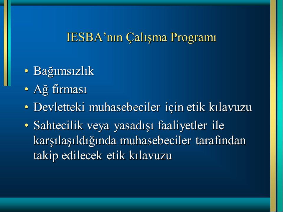 IESBA'nın Çalışma Programı