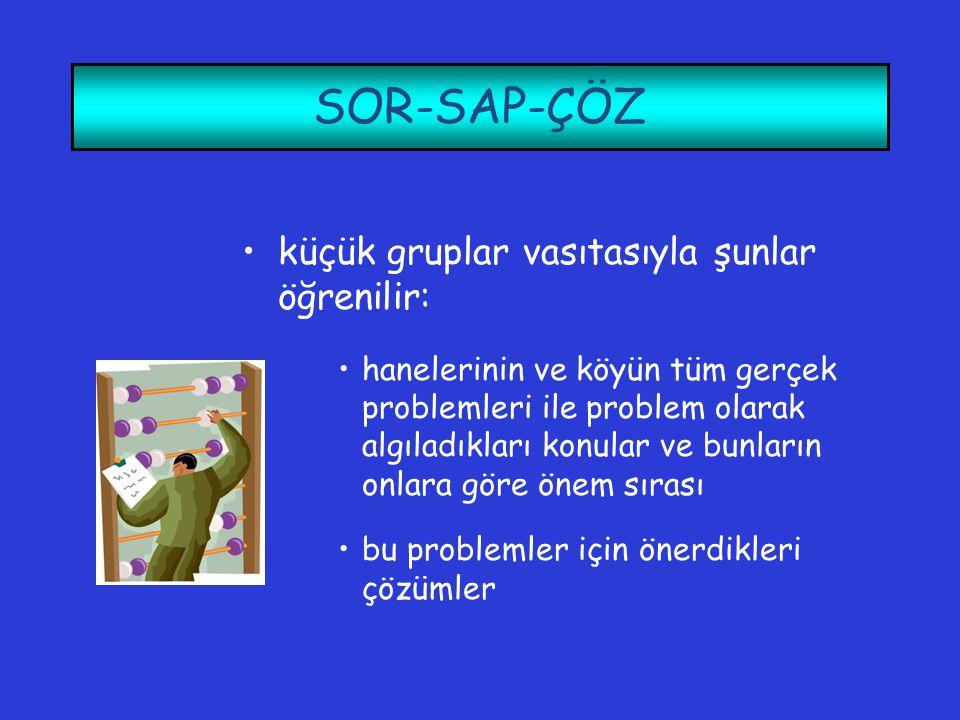 SOR-SAP-ÇÖZ küçük gruplar vasıtasıyla şunlar öğrenilir: