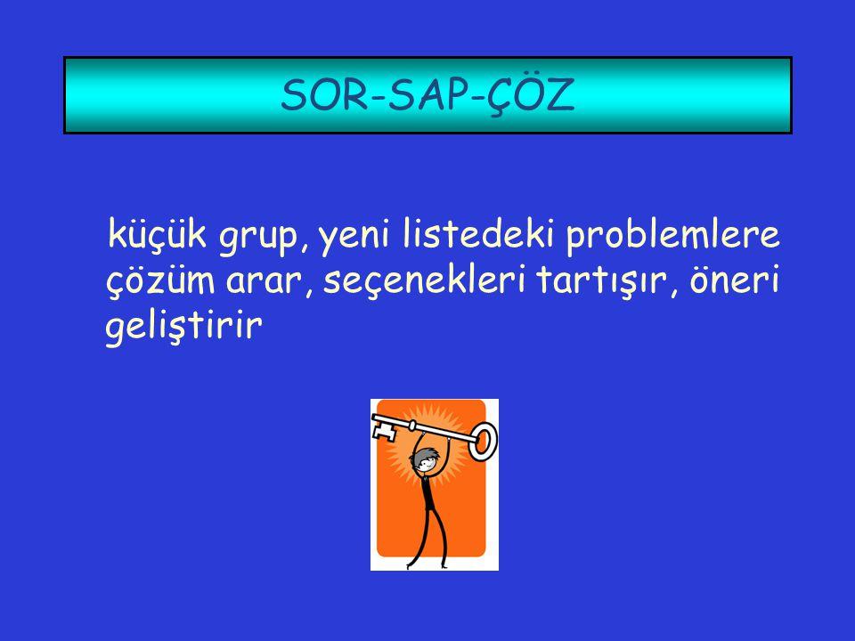 SOR-SAP-ÇÖZ küçük grup, yeni listedeki problemlere çözüm arar, seçenekleri tartışır, öneri geliştirir.