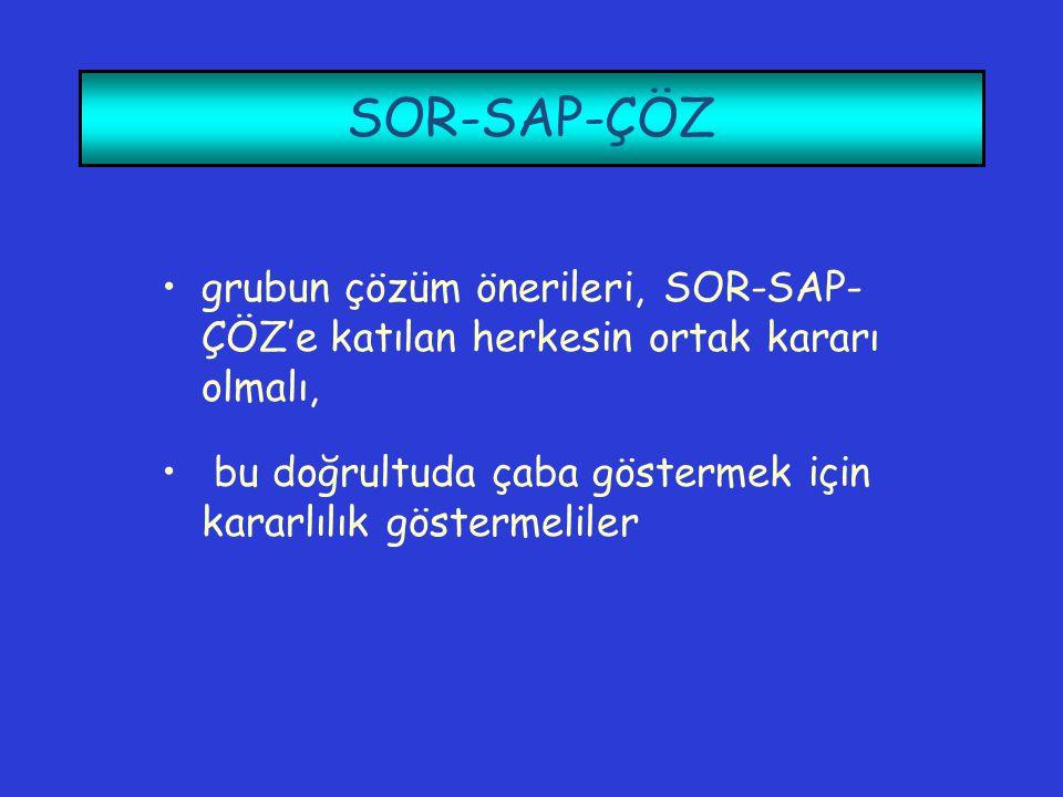 SOR-SAP-ÇÖZ grubun çözüm önerileri, SOR-SAP-ÇÖZ'e katılan herkesin ortak kararı olmalı, bu doğrultuda çaba göstermek için kararlılık göstermeliler.