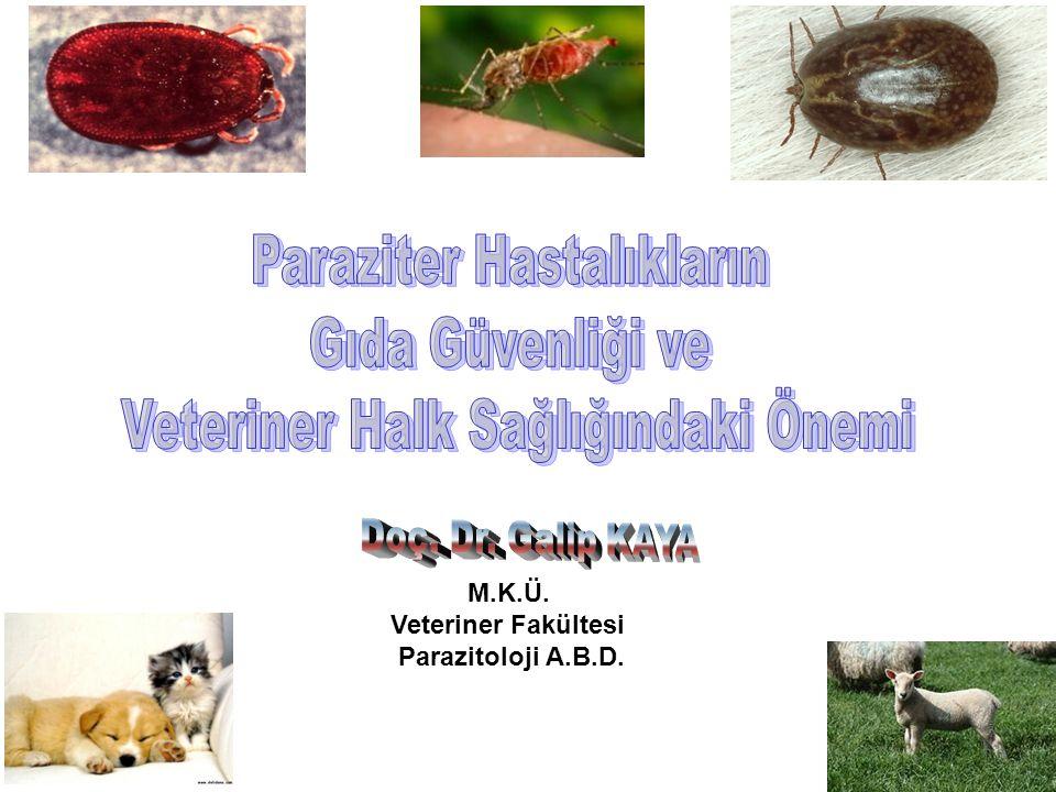 Paraziter Hastalıkların Gıda Güvenliği ve