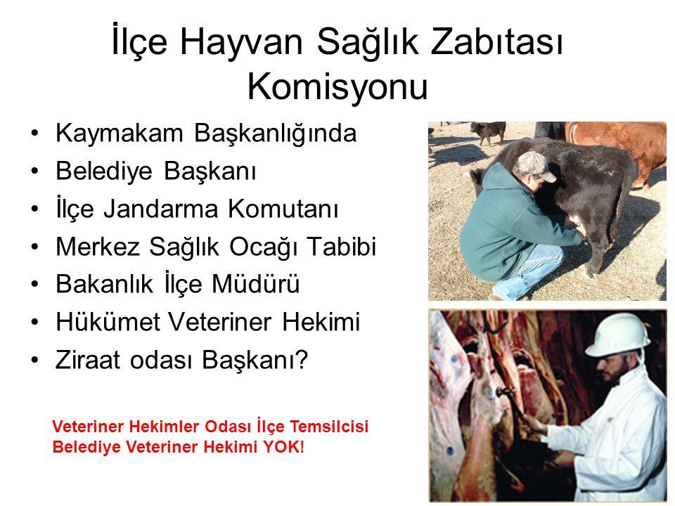 İlçe Hayvan Sağlık Zabıtası Komisyonu