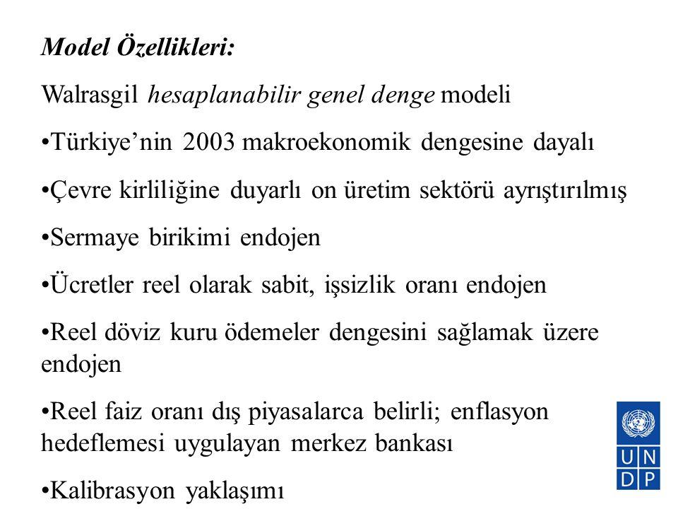 Model Özellikleri: Walrasgil hesaplanabilir genel denge modeli. Türkiye'nin 2003 makroekonomik dengesine dayalı.
