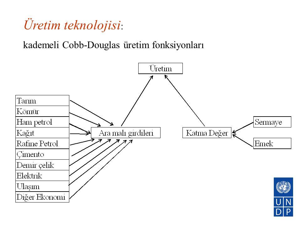Üretim teknolojisi: kademeli Cobb-Douglas üretim fonksiyonları