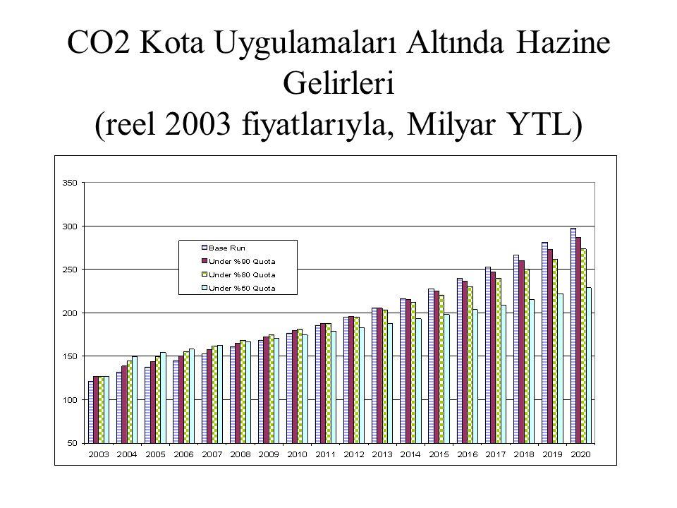 CO2 Kota Uygulamaları Altında Hazine Gelirleri