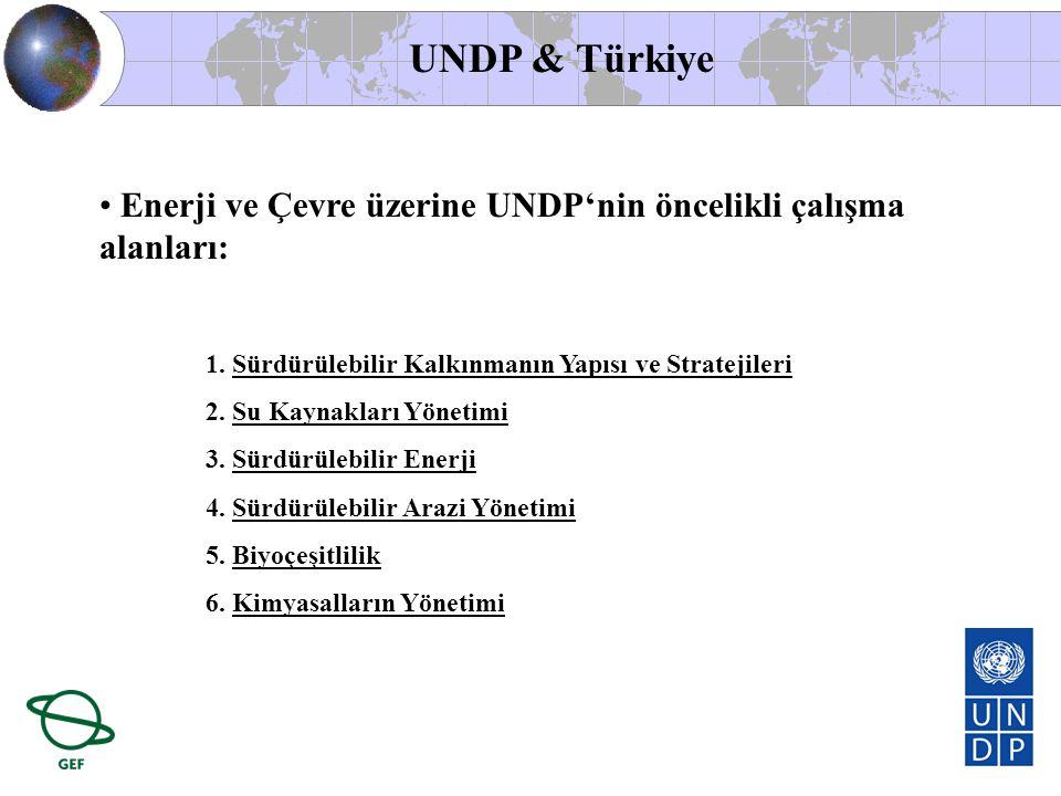 UNDP & Türkiye Enerji ve Çevre üzerine UNDP'nin öncelikli çalışma alanları: Sürdürülebilir Kalkınmanın Yapısı ve Stratejileri.