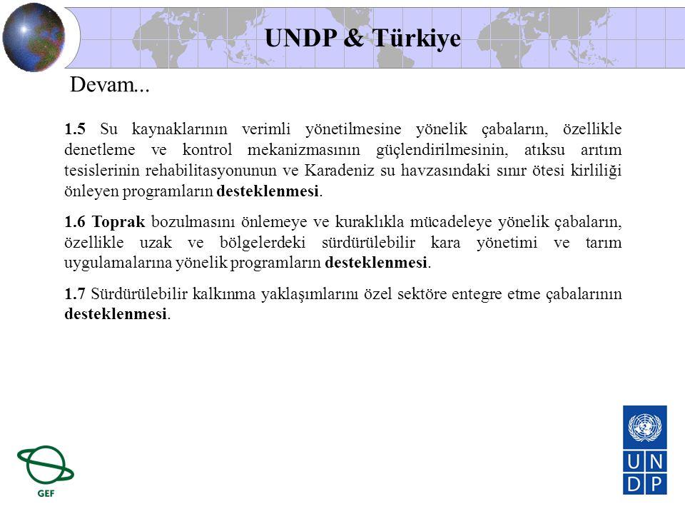 UNDP & Türkiye Devam...