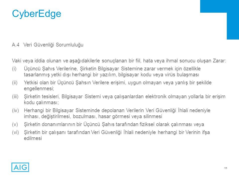 CyberEdge A.4 Veri Güvenliği Sorumluluğu
