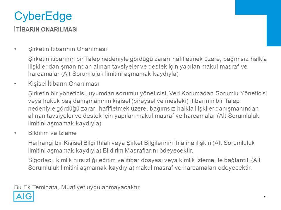 CyberEdge Şirketin İtibarının Onarılması