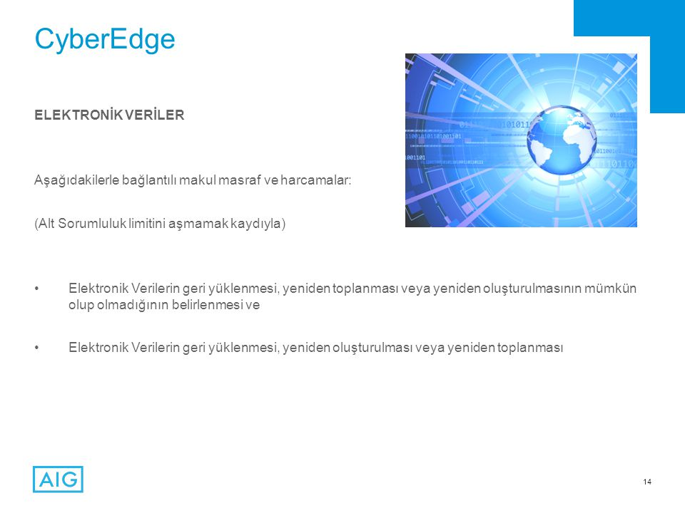 CyberEdge ELEKTRONİK VERİLER