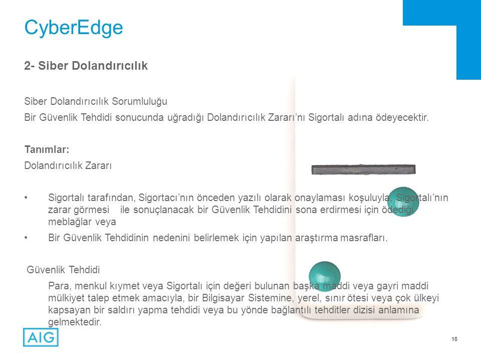 CyberEdge 2- Siber Dolandırıcılık Siber Dolandırıcılık Sorumluluğu