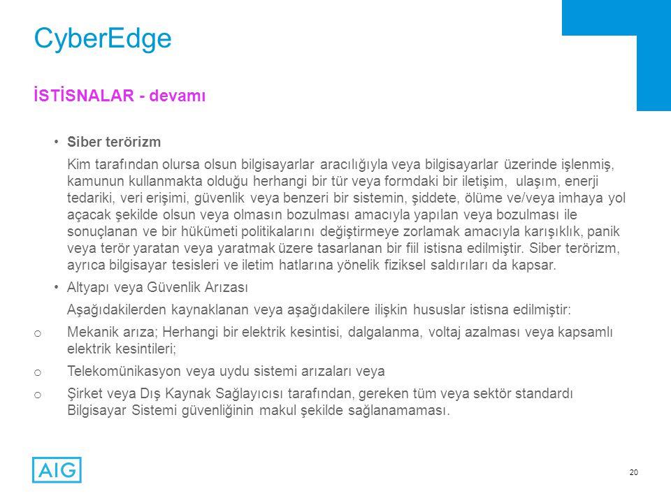 CyberEdge İSTİSNALAR - devamı Siber terörizm