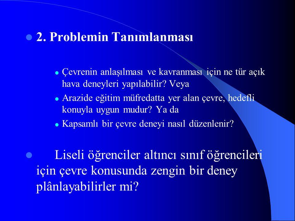 2. Problemin Tanımlanması