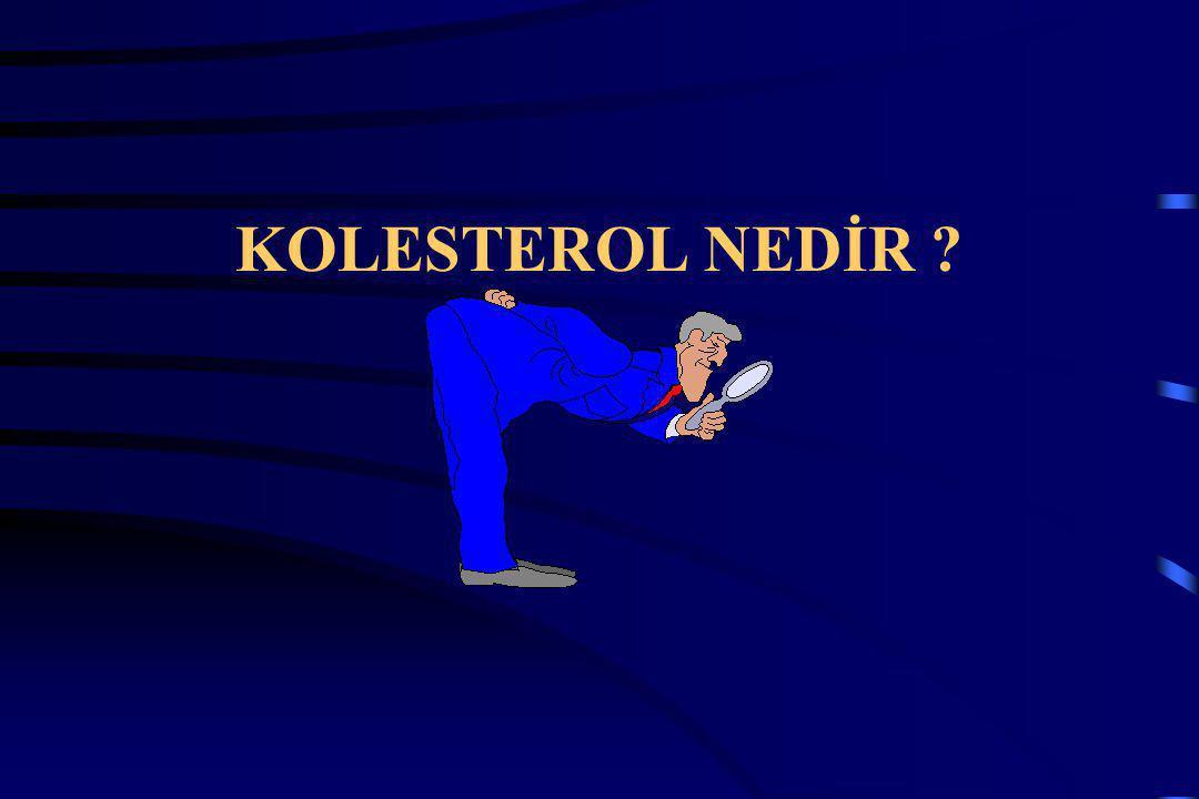 KOLESTEROL NEDİR