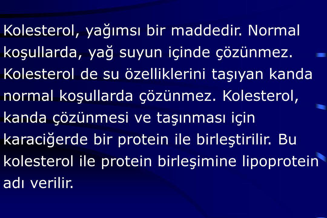 Kolesterol, yağımsı bir maddedir