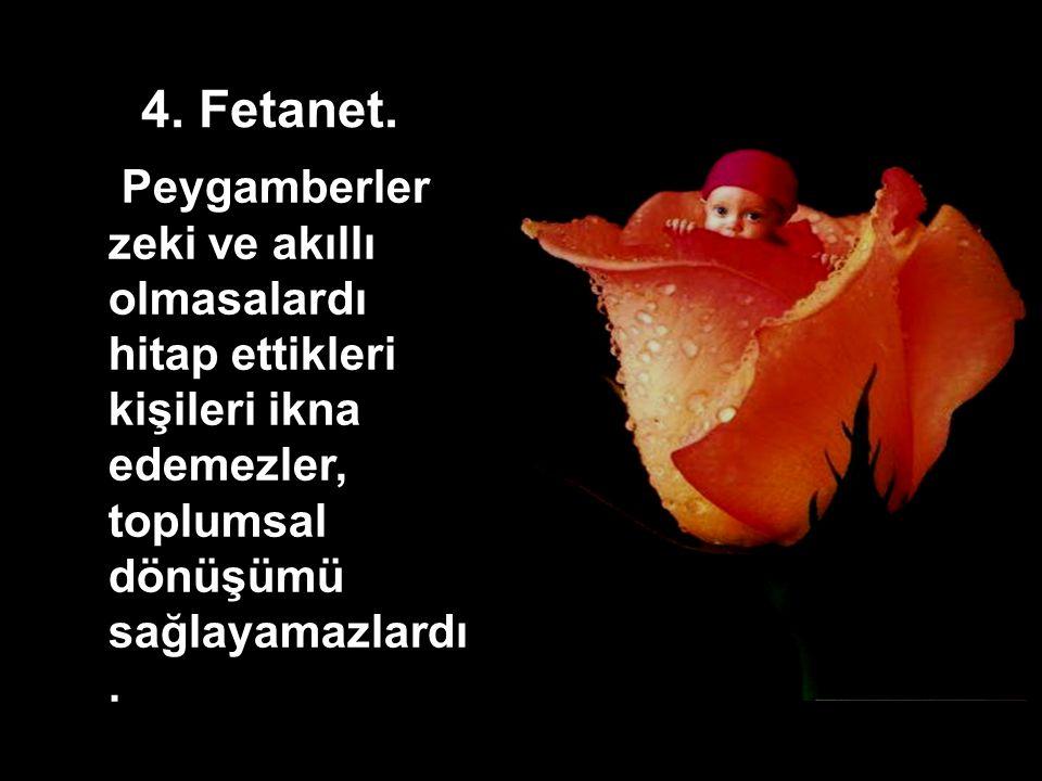 4. Fetanet.
