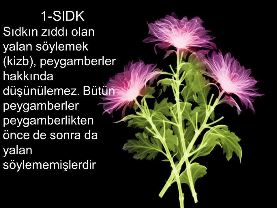 1-SIDK