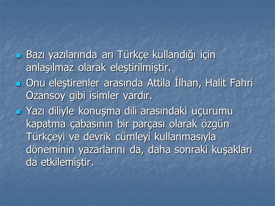 Bazı yazılarında arı Türkçe kullandığı için anlaşılmaz olarak eleştirilmiştir.