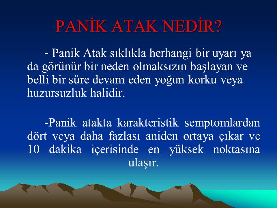 PANİK ATAK NEDİR
